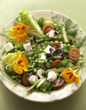 Salade printanière pour 4 personnes