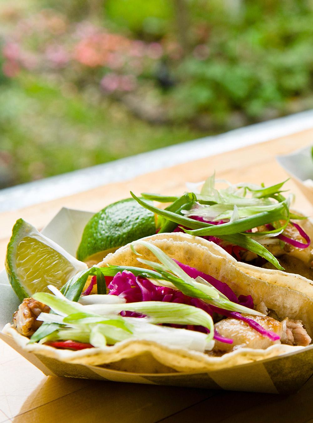 Tacos au porc braisé et à l'embeurrée de chou de grumman | ricardo