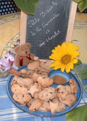Recette de biscuits à la cannelle et aux pépites de chocolat